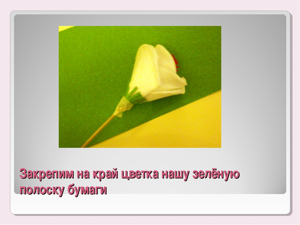 Закрепим на край цветка нашу зелёную полоску бумаги