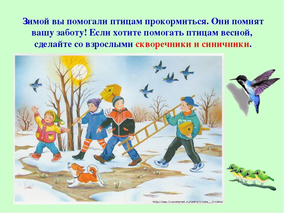 Зимой вы помогали птицам прокормиться. Они помнят вашу заботу! Если хотите по...