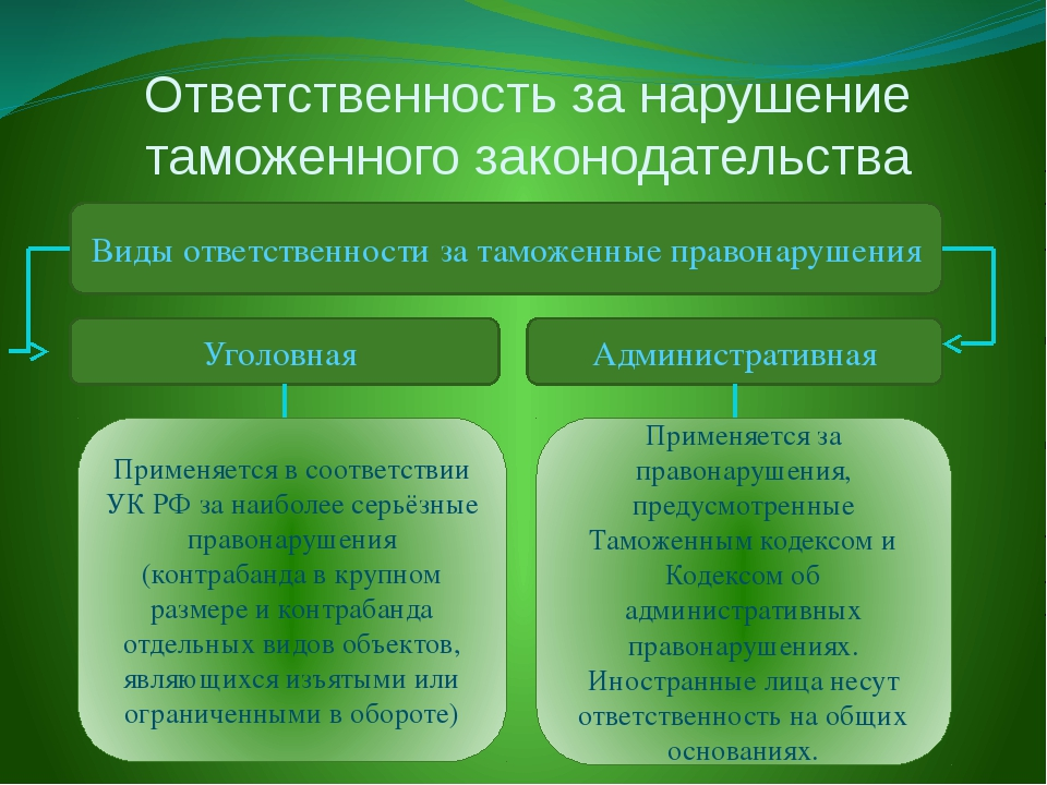 Ответственность за нарушение таможенного законодательства Виды ответственност...