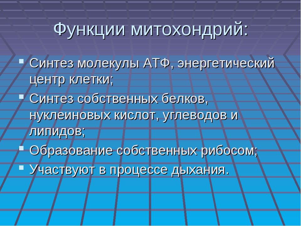 Функции митохондрий: Синтез молекулы АТФ, энергетический центр клетки; Синтез...