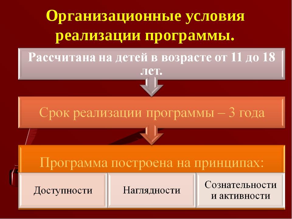 Организационные условия реализации программы.