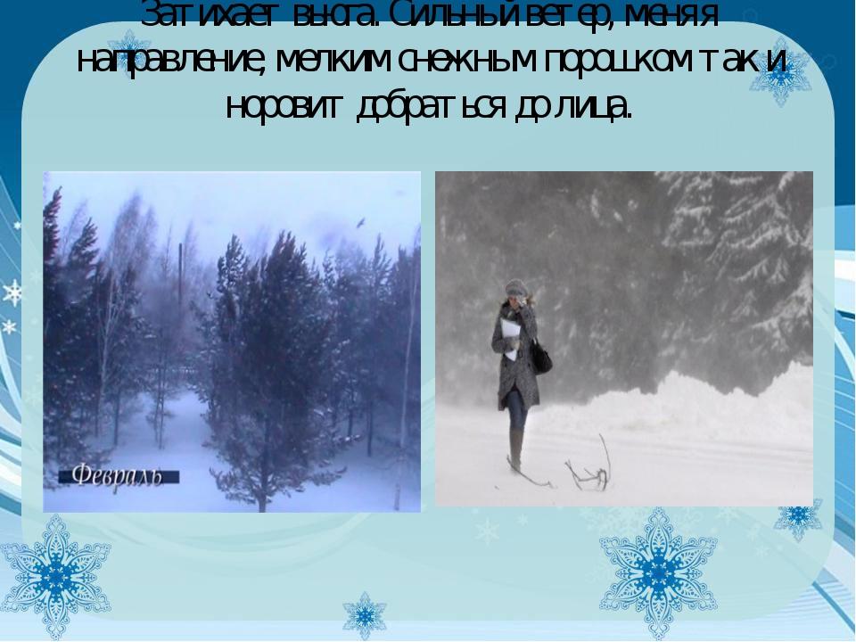 Затихает вьюга. Сильный ветер, меняя направление, мелким снежным порошком так...