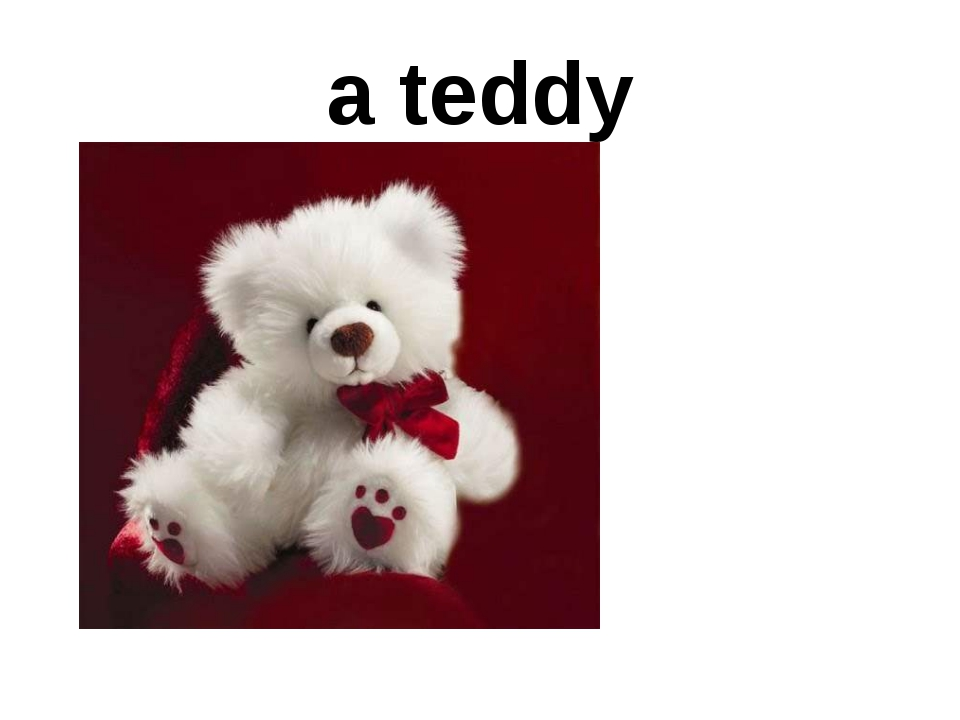 a teddy Is it a gout? What's this? Is it big? Is it black? What colour is it?