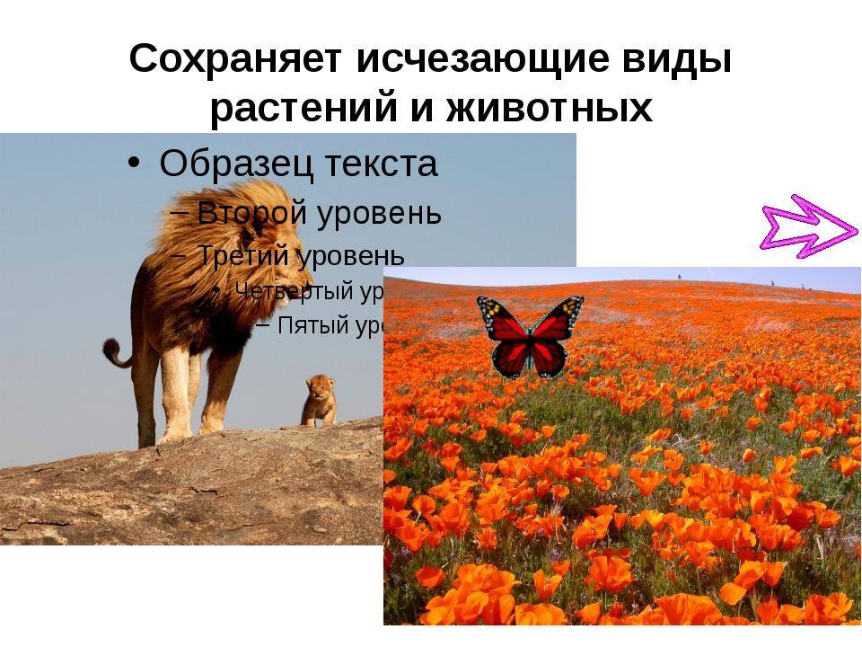 Сохраняет исчезающие виды растений и животных