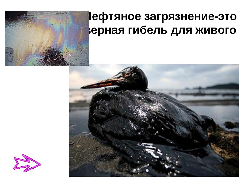 Нефтяное загрязнение-это верная гибель для живого