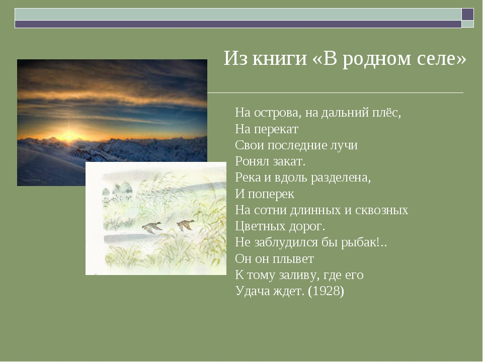 Из книги «В родном селе» На острова, на дальний плёс, На перекат Свои послед...