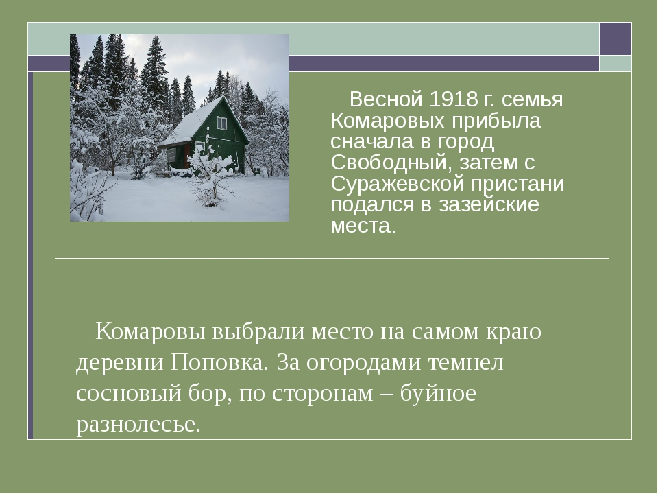 Комаровы выбрали место на самом краю деревни Поповка. За огородами темнел со...