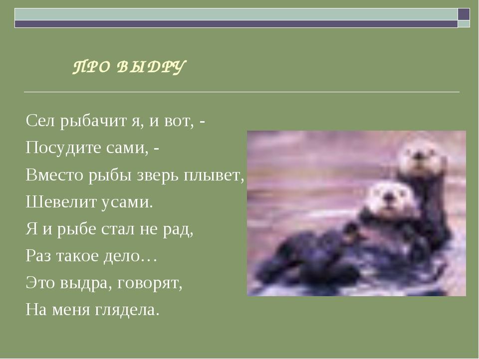 ПРО ВЫДРУ Сел рыбачит я, и вот, - Посудите сами, - Вместо рыбы зверь плывет,...