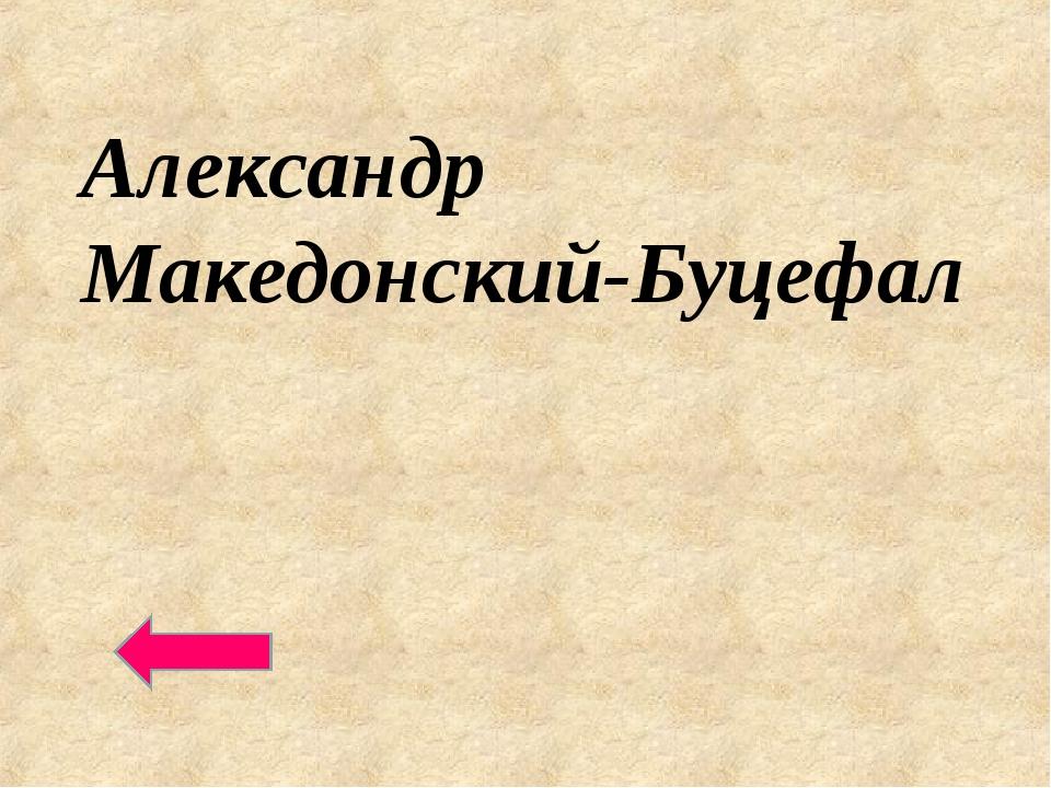 Александр Македонский-Буцефал