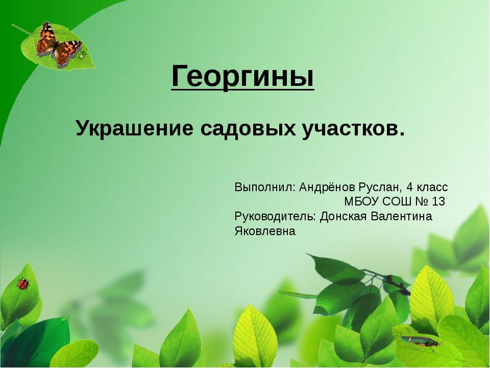 Георгины Украшение садовых участков. Выполнил: Андрёнов Руслан, 4 класс МБОУ...