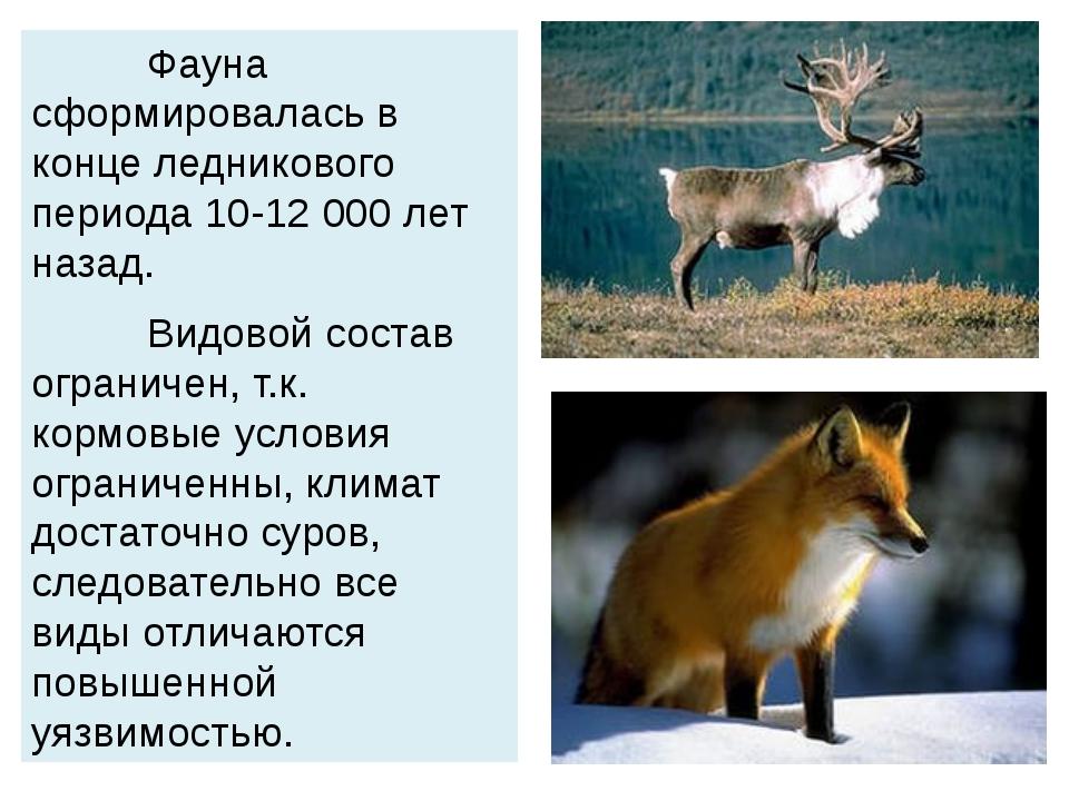 Фауна сформировалась в конце ледникового периода 10-12 000 лет назад. Видово...