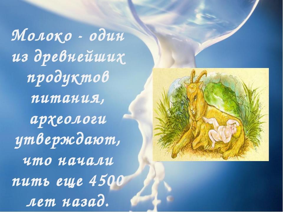 Молоко - один из древнейших продуктов питания, археологи утверждают, что нача...
