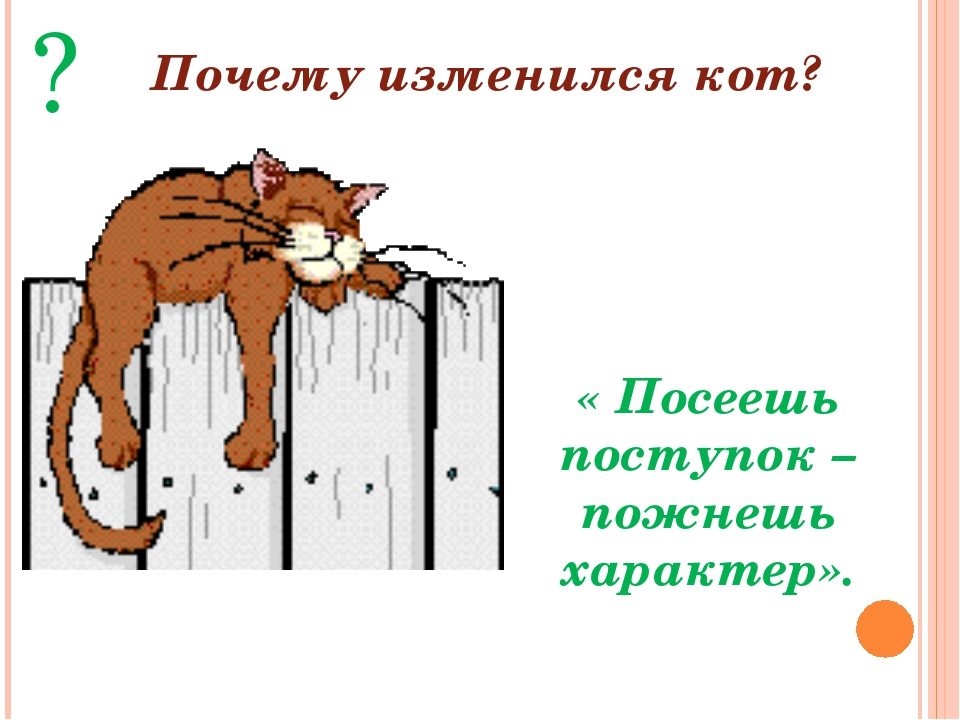 « Посеешь поступок – пожнешь характер». ? Почему изменился кот?