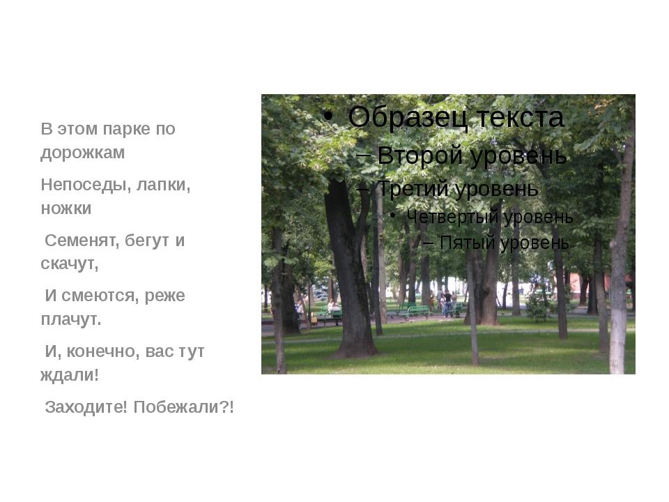 В этом парке по дорожкам Непоседы, лапки, ножки Семенят, бегут и скачут, И с...