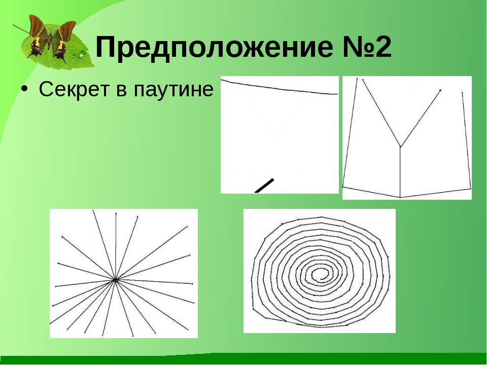 Предположение №2 Секрет в паутине