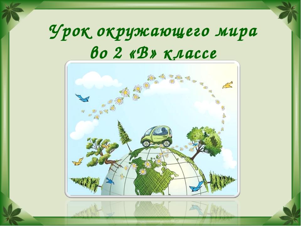 Урок окружающего мира во 2 «В» классе