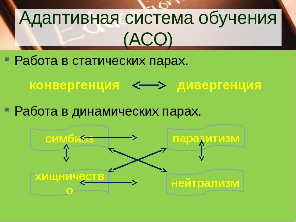 Адаптивная система обучения (АСО) Работа в статических парах. Работа в динами...