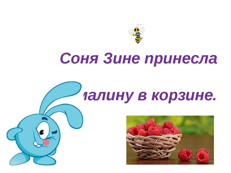 Соня Зине принесла малину в корзине.