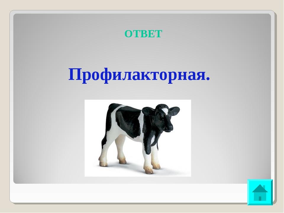 ОТВЕТ Профилакторная.
