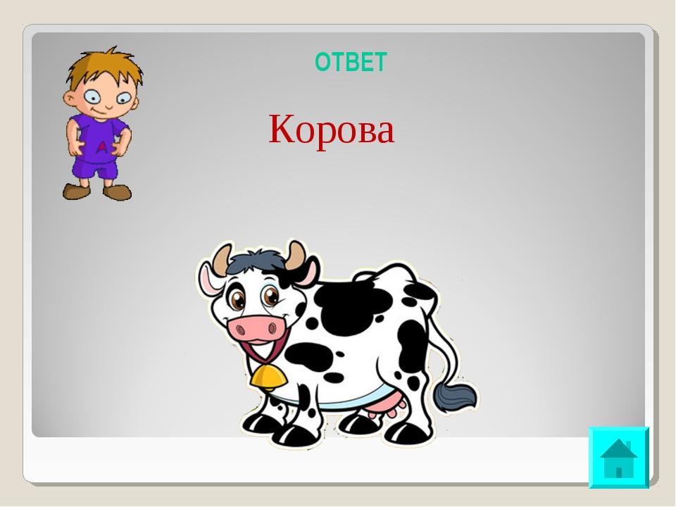 ОТВЕТ Корова