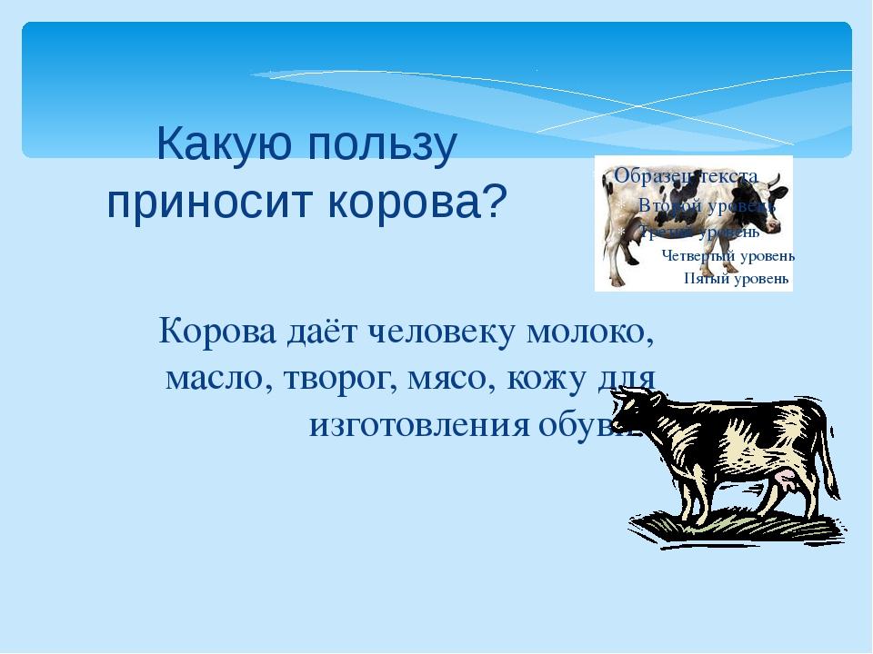 Корова даёт человеку молоко, масло, творог, мясо, кожу для изготовления обуви...