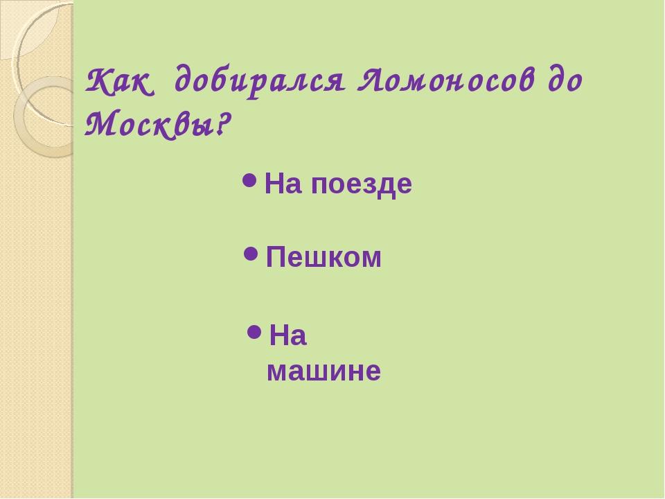 Как добирался Ломоносов до Москвы? На поезде Пешком На машине