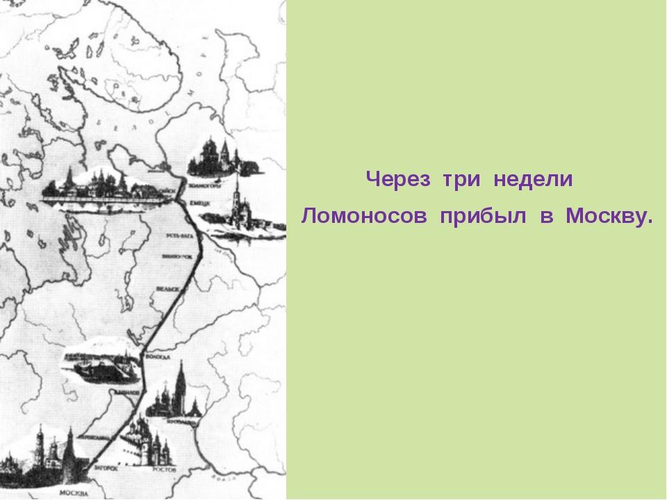 Через три недели Ломоносов прибыл в Москву.