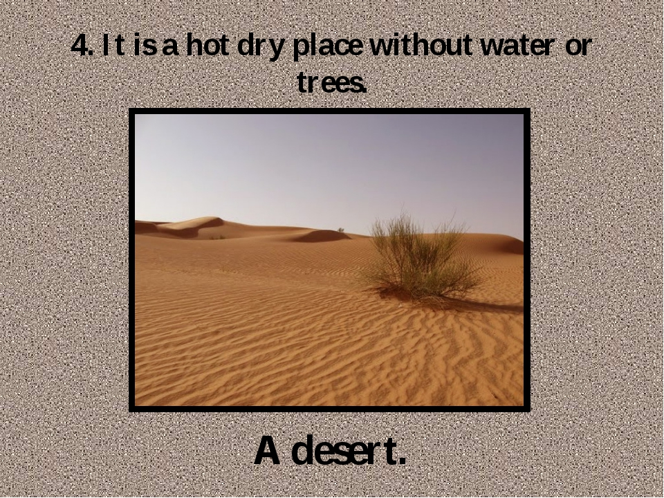 4. It is a hot dry place without water or trees. A desert.