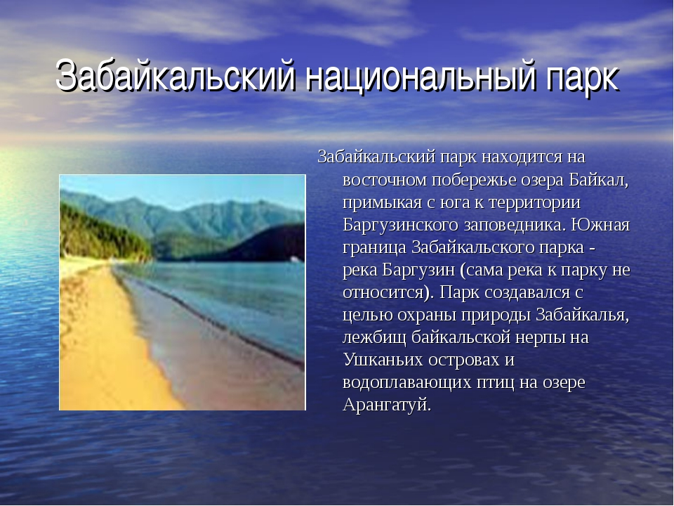 Забайкальский национальный парк Забайкальский парк находится на восточном поб...