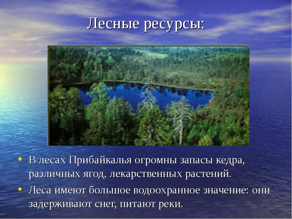 Лесные ресурсы: В лесах Прибайкалья огромны запасы кедра, различных ягод, лек...