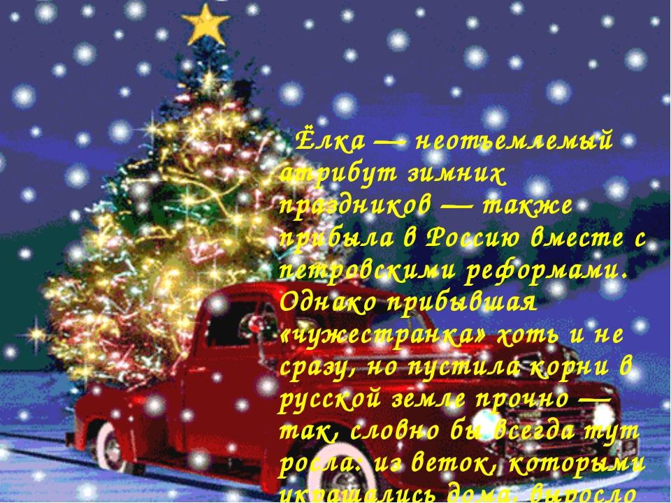 Ёлка — неотъемлемый атрибут зимних праздников — также прибыла в Россию вмест...