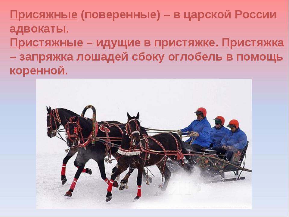 Присяжные (поверенные) – в царской России адвокаты. Пристяжные – идущие в при...