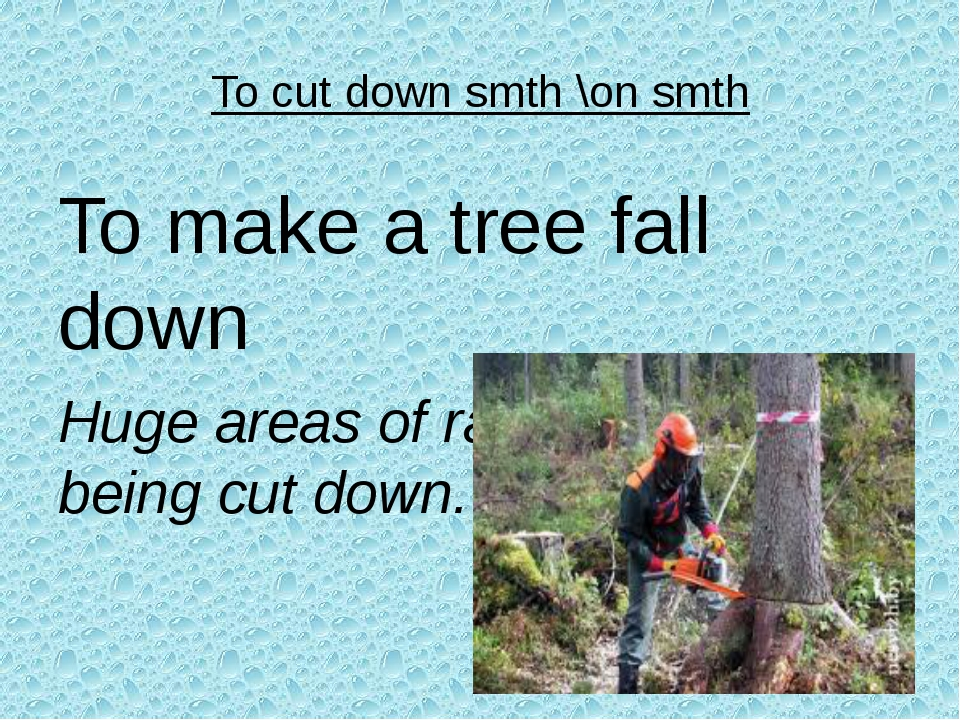 To cut down smth \on smth To make a tree fall down Huge areas of rain forests...