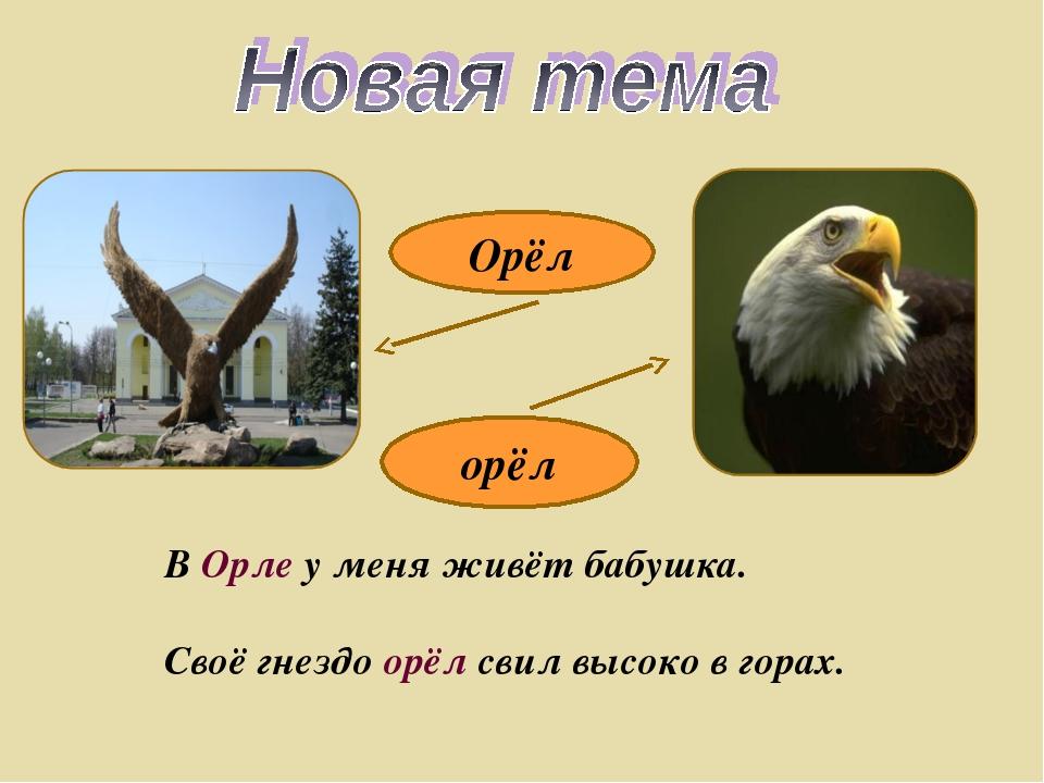 орёл Орёл В Орле у меня живёт бабушка. Своё гнездо орёл свил высоко в горах.