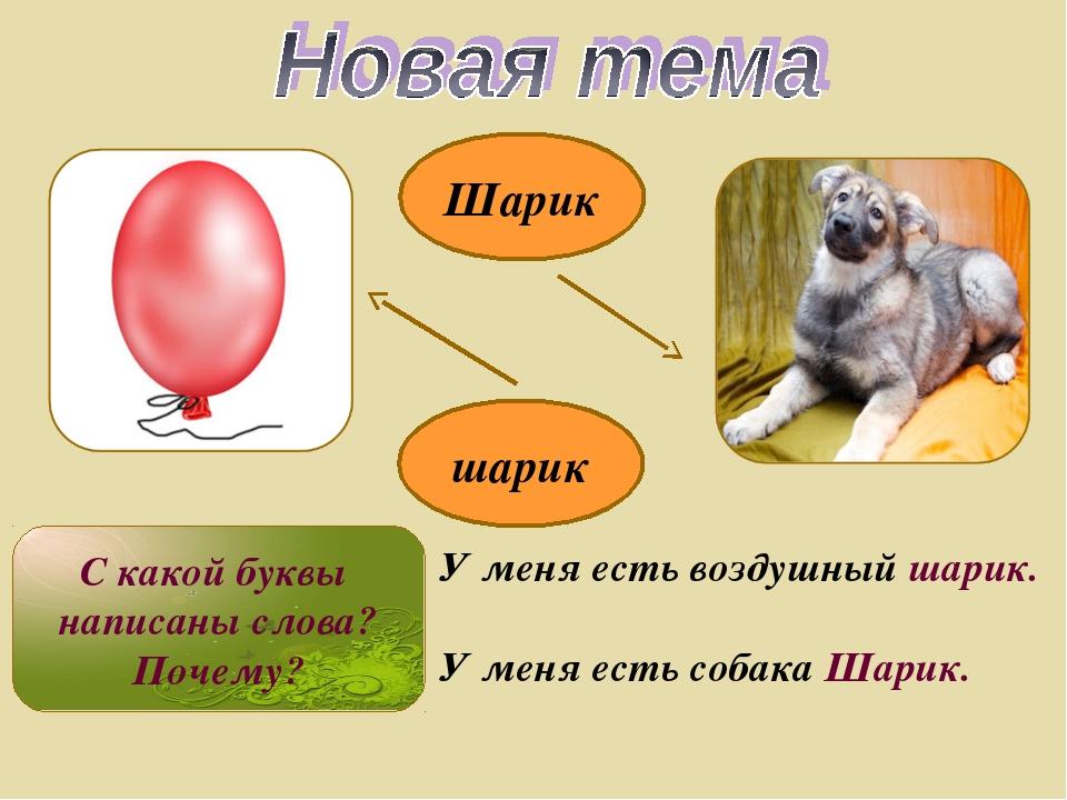 Шарик шарик У меня есть воздушный шарик. У меня есть собака Шарик. С какой бу...