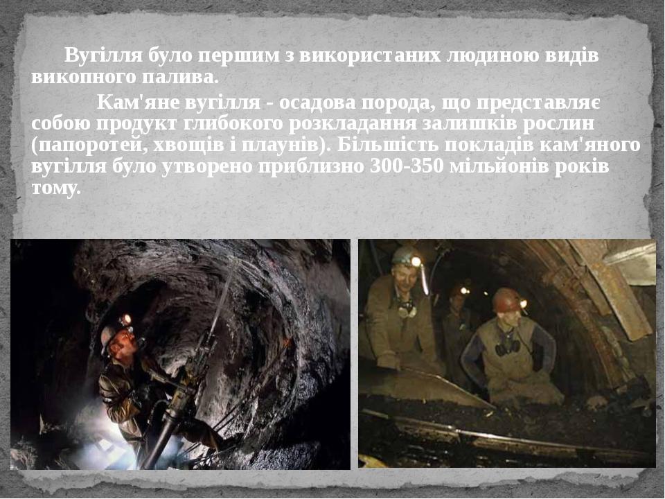 Вугілля було першим з використаних людиною видів викопного палива. Кам'ян...