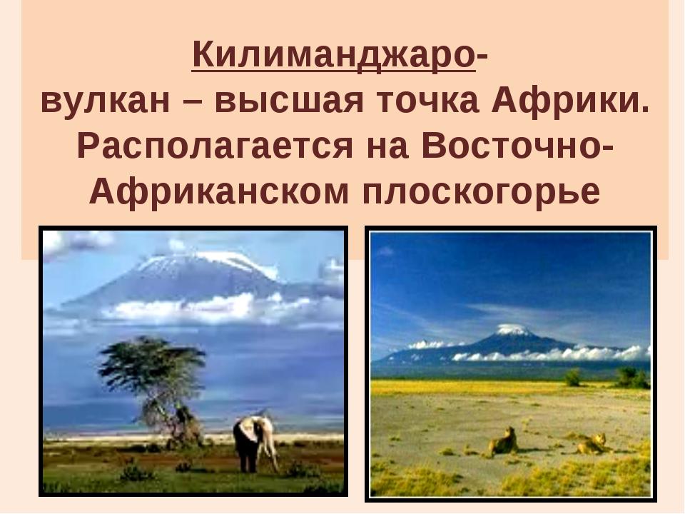 Килиманджаро- вулкан – высшая точка Африки. Располагается на Восточно-Африка...