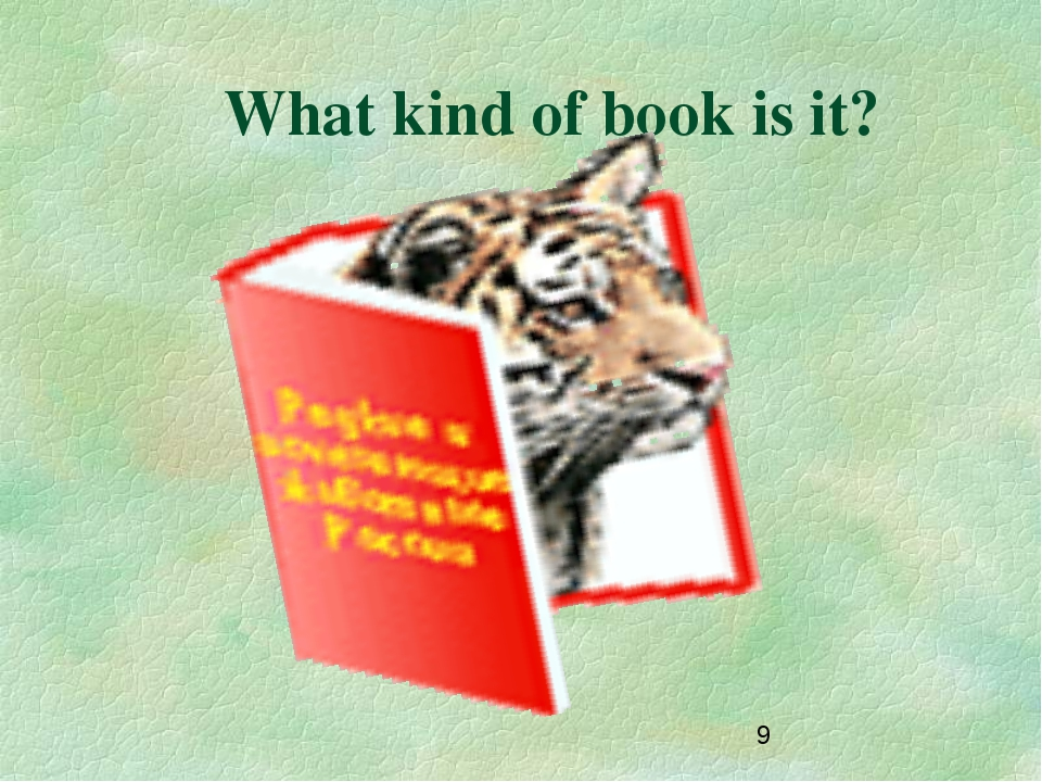 What kind of book is it?