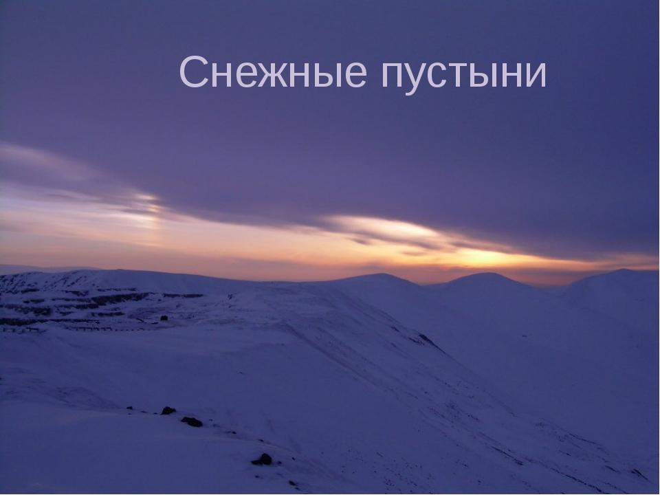 Снежные пустыни