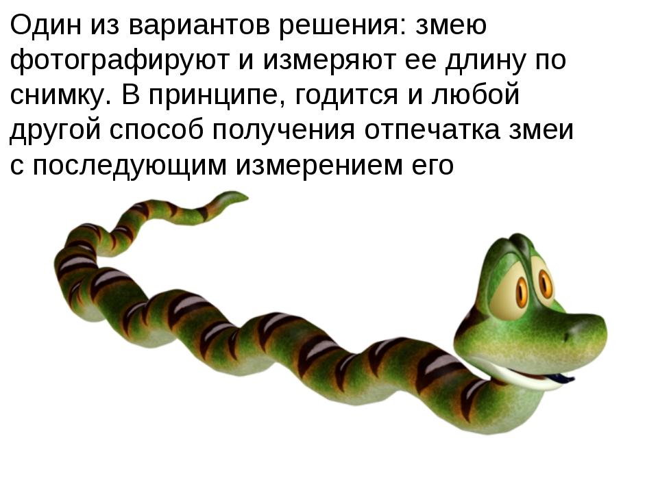 Один из вариантов решения: змею фотографируют и измеряют ее длину по снимку....