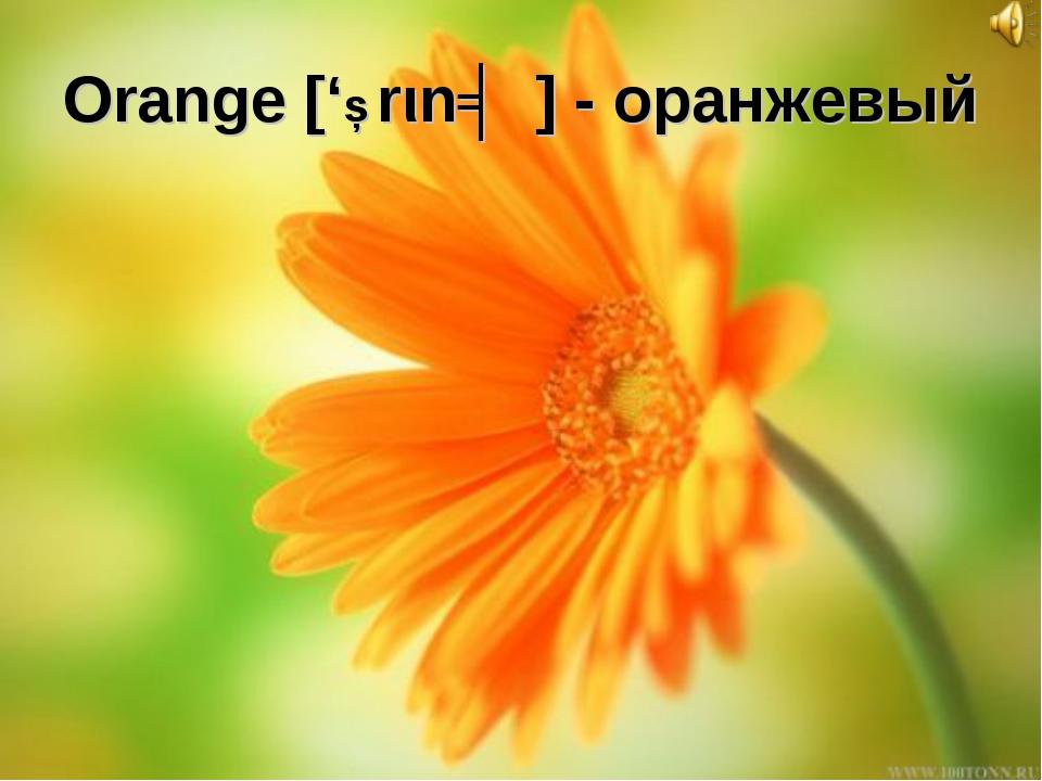 Orange ['Ɔrιnʤ] - оранжевый