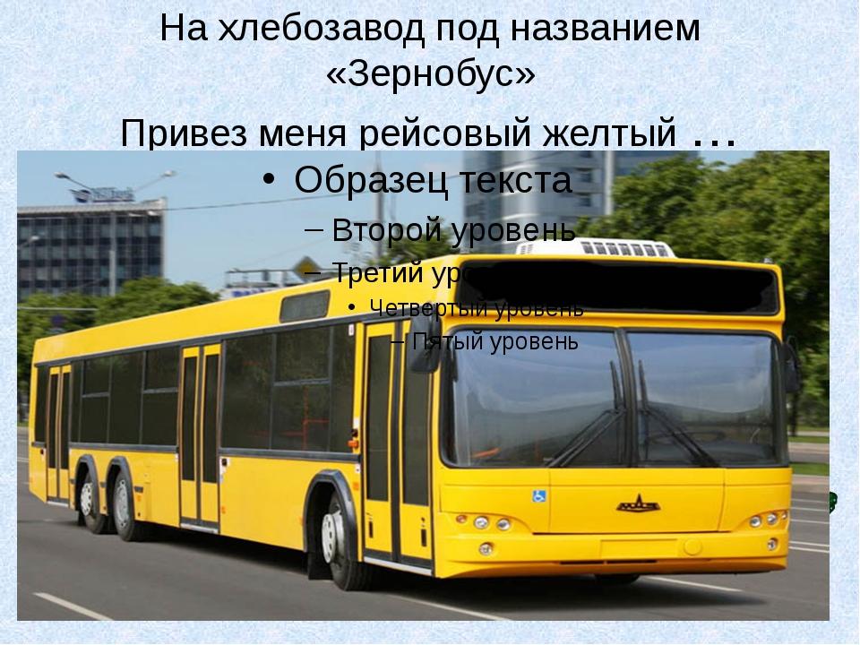 На хлебозавод под названием «Зернобус» Привез меня рейсовый желтый …