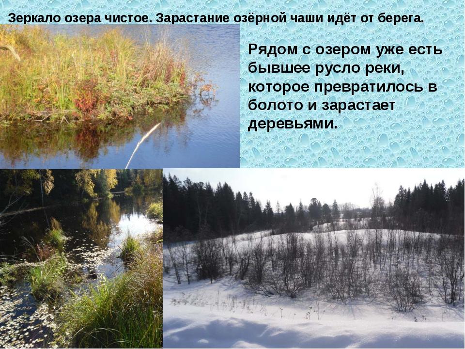 Зеркало озера чистое. Зарастание озёрной чаши идёт от берега. Рядом с озером...