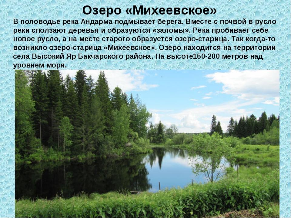 Озеро «Михеевское» В половодье река Андарма подмывает берега. Вместе с почвой...