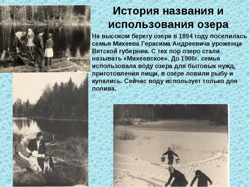 На высоком берегу озера в 1894 году поселилась семья Михеева Герасима Андреев...