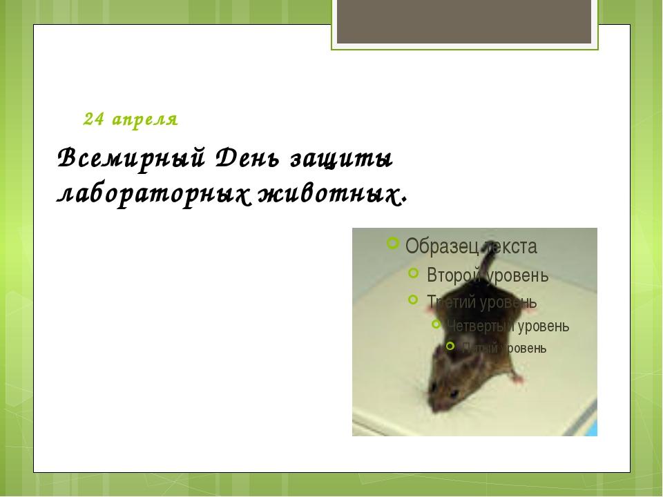 24 апреля  Всемирный День защиты лабораторных животных.