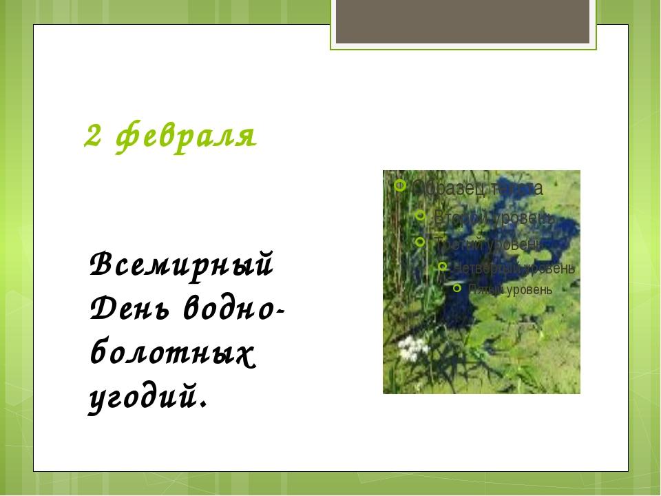 2 февраля Всемирный День водно-болотных угодий.