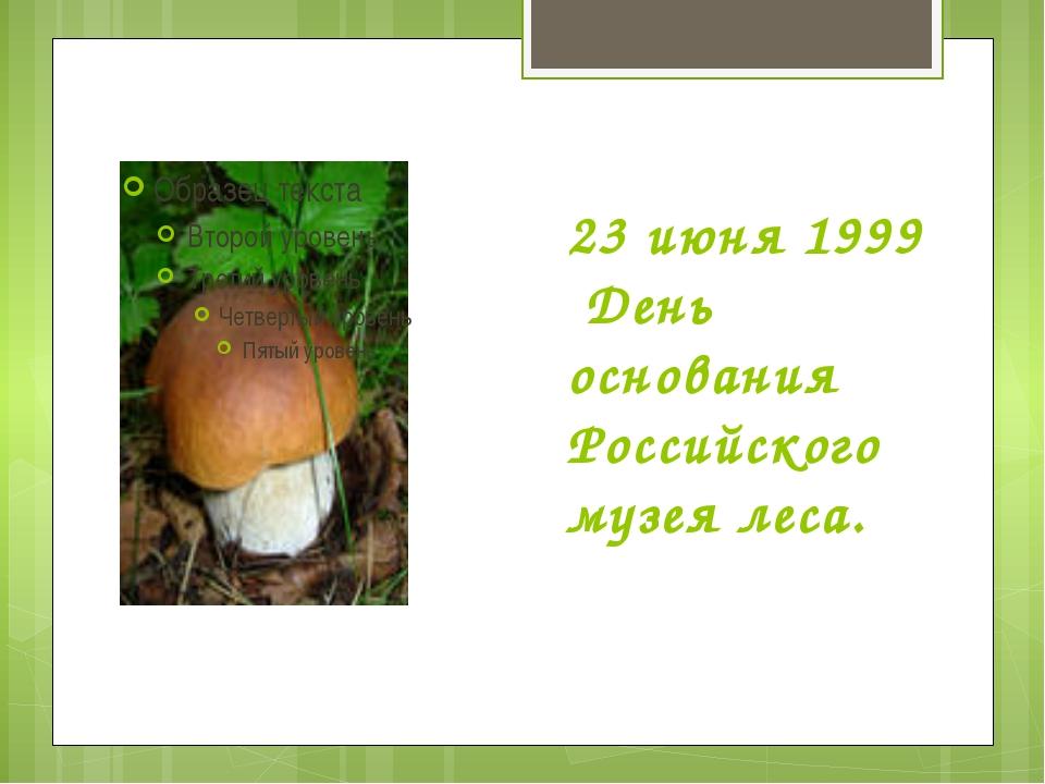 23 июня 1999 День основания Российского музея леса.