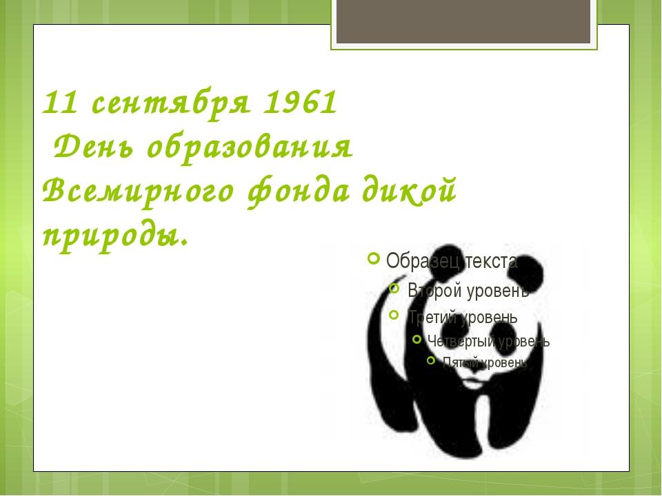 11 сентября 1961 День образования Всемирного фонда дикой природы.