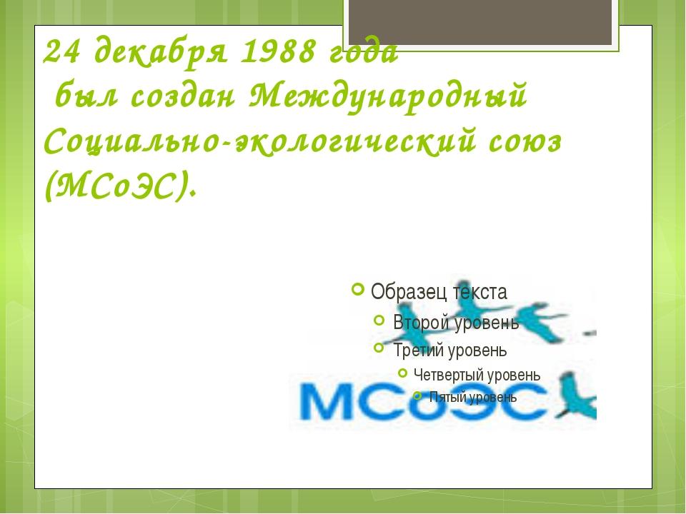 24 декабря 1988 года был создан Международный Социально-экологический союз (М...